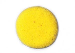 Picture of S6 Sponge
